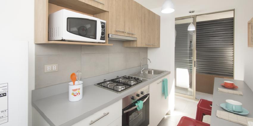 Proyecto Antumalal de Inmobiliaria MNK-11