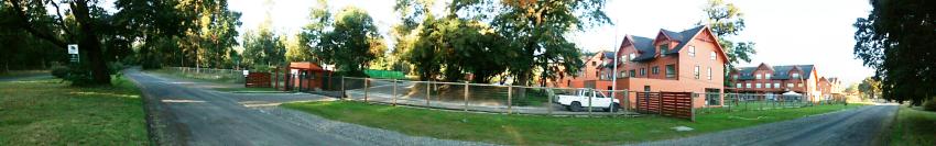 bosques-de-puerto-pucón-48