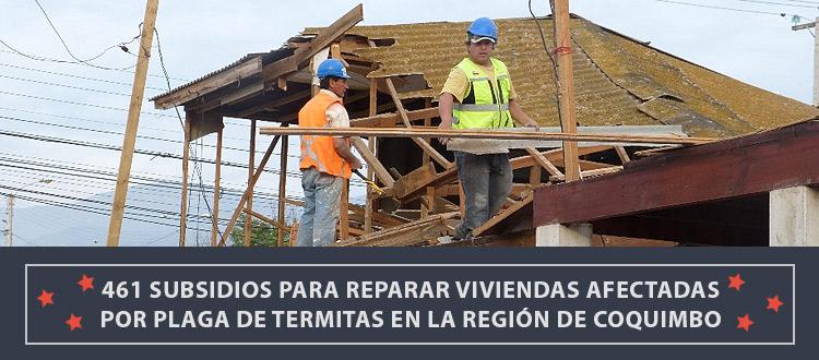 461-subsidios-para-reparar-viviendas-afectadas-por-plaga-de-termitas-en-la-recion-de-coquimbo