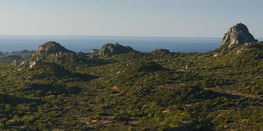 Proyecto Condominio Rocas del Mar - Sitios de Inmobiliaria Foresta del Mar-11
