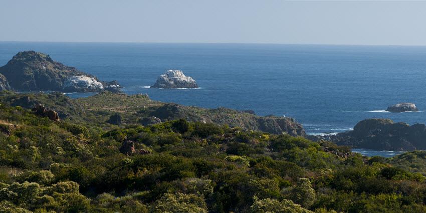 Proyecto Condominio Rocas del Mar - Sitios de Inmobiliaria Foresta del Mar-12