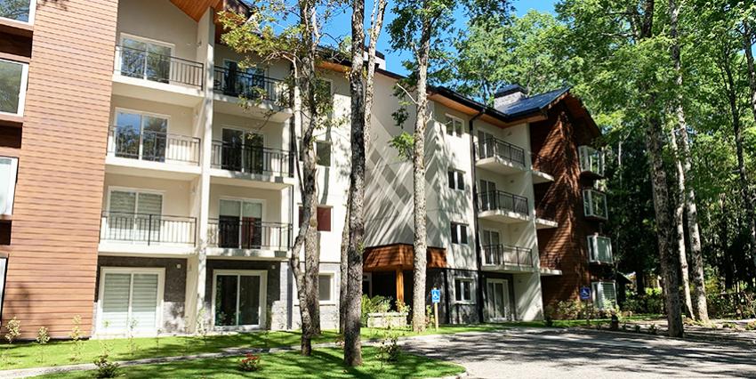 Proyecto Pucón Andino - Los Coihues III de Inmobiliaria Onewaite Desarrollos Inmobiliarios-2