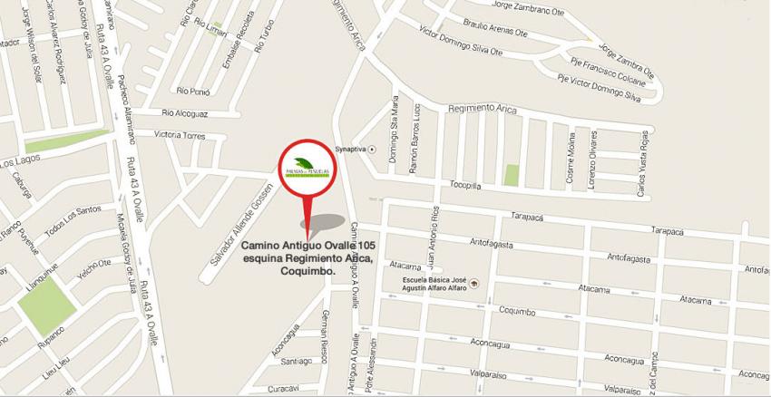 Proyecto Palmas de Peñuelas de Inmobiliaria Ecasa-8