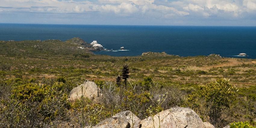 Proyecto Condominio Rocas del Mar - Sitios de Inmobiliaria Foresta del Mar